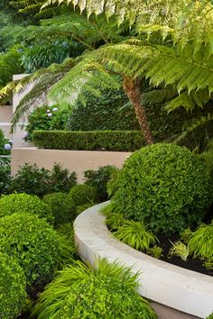 22391 best Green & White Landscaping images on Pinterest in 2018 ...