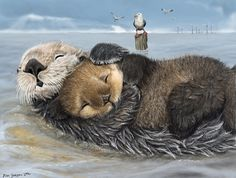 Habitat - Isha's Sea Otters