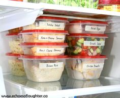 Echoes of Laughter: Organizing The Fridge for Healthy 'Fast Food' At Home