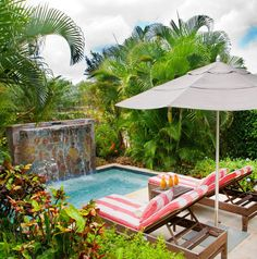 Your own private palm grove at @Four Seasons Resort Nevis, West Indies