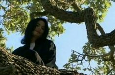 Just a picture of Michael Jackson casually sitting in a tree