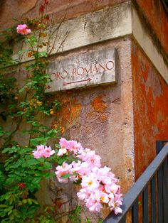 Roman Forum sign, with lovely pink flowers.