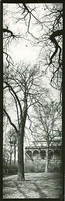 Josef SUDEK, Belvedere Garden Prague, Gelatin Silver Print, c.1950