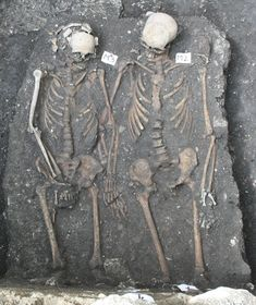 In Cluj-Napoca, Transylvania, Romania, archaeologists unearthed a male skeleton and a female skeleton from the late Middle Ages, holding hands.