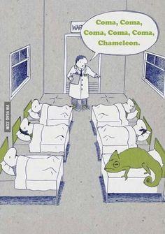 Culture Club, Karma Chameleon