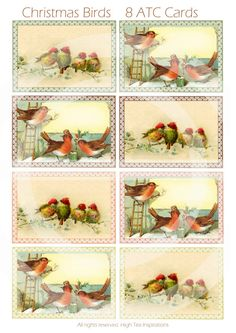 CHRISTMAS BIRDS  8 Cristmas ATC Cards  by HighTeaInspirations