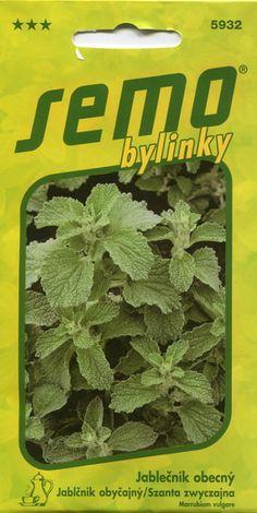 Ürt-penimünt ''Jablecnik'' Marrubium vulgare Kransborre
