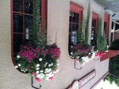 Great pots outside a restaurant in Port Townsend, WA  http://lindapjones.com