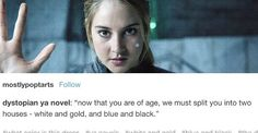 """Now that you are of age, we must split you into two houses - blue and black and white and gold."""