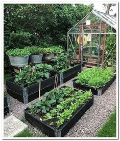 Best 52 Vegetable Garden Design Ideas for Green Living - Bepflanzung Backyard Vegetable Gardens, Veg Garden, Garden Types, Vegetable Garden Design, Garden Cottage, Garden Edging, Outdoor Gardens, Vegetables Garden, Indoor Garden