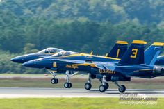 United States Navy US Navy Flight Demonstration Squadron Blue Angels McDonnell Douglas F/A-18C Hornet