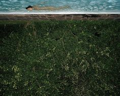 Christian Vogt. Swimming Pool