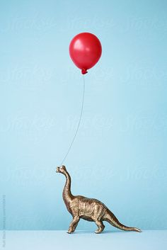 Toy dinosaur and balloon by Ruth Black - Birthday, Balloon - Stocksy United Happy Birthday Art, Happy Birthday Wishes Cards, Birthday Images, Birthday Fun, Birthday Quotes, Birthday Cards, Dinosaur Funny, Dinosaur Birthday Party, Happy B Day