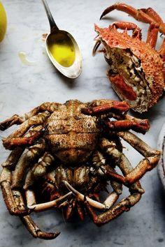 Spider crab & olive oil