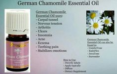 German Chamomile Essential Oil, Essential Oils For Eczema, Yl Oils, Doterra Oils, Essential Oil Uses, Natural Essential Oils, Essential Oil Diffuser, Young Living Oils, Young Living Essential Oils