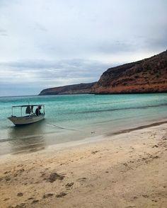 Gorgeous tranquil beach near Isla Espiritu Santo, La Paz, Mexico. It is absolutely beautiful here :: Deanna Underwood, Family Lifestyle and Travel, http://www.instagram.com/honeyandlimeco