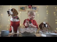 YouTube Presents Little Girl Surprises Dogs With Christmas Cookies!!