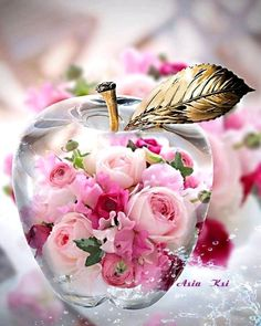 Cute Flower Wallpapers, Wallpaper Nature Flowers, Rose Flower Wallpaper, Butterfly Wallpaper, Beautiful Rose Flowers, Pink Flowers, Amazing Flowers, Iphone Wallpaper Video, Apple Wallpaper
