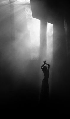 silhouette beauty... Concert, Beautiful