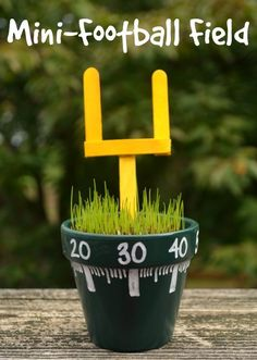 A cute and easy football field centerpiece for your Super Bowl party.