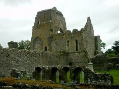 Ireland In Ruins: Athassel Abbey Co Tipperary much more interesting than walking around Rock of Cashel.
