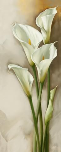 Few fresh cut flowers offer the elegance and versatility of the calla lily. If you are designing your own wedding bouquet, centerpieces or arrangements, the calla lily will provide all of the style… Lys Calla, Calla Lillies, Calla Lily, Art Floral, Flower Prints, Flower Art, Simple Flower Painting, Watercolor Flowers, Watercolor Paintings