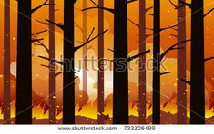 Burning  wildfire in California with charred trees in silhouette. Natural disaster. Vector illustration.