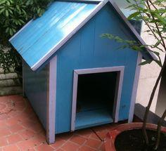 Các mẫu nhà cho chó đẹp và chất lượng