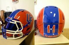 Florida gators 2013