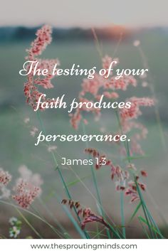 Perseverance....must have faith ❤