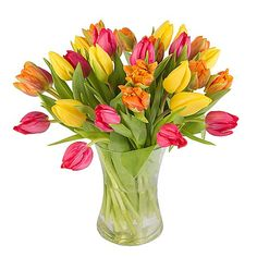 Bright Mix Tulips with Vase http://www.serenataflowers.com/en/uk/flowers/next-day-delivery/product/108060/bright-mix-tulips-with-vase?refPageID=5045&refDivID=6|center|product-set|category-list|4x5|1+++3|5|product|108060|image|140x140|standing|4|5|standard|