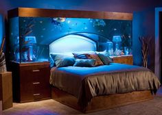 Bedroom Aquarium