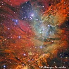 Fox and Cone nebulae Credit: DSS/Giuseppe Donatiello