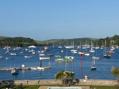 Salcombe harbour Photo by Helen Lecomber