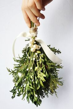 Mistletoe - These Holiday Decorations Have Got To Go - Photos