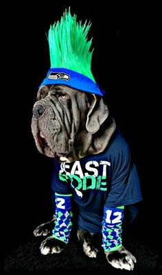 BEAST MODE MASCOT.. TOOO CUTE. Makes you want to give him a hug and shower him with SKITTLES...