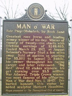o War Man O War his trainer once spoke of him as hell to break a head ache to handle and a catapult to ride.Man O War his trainer once spoke of him as hell to break a head ache to handle and a catapult to ride. Beautiful Horses, Animals Beautiful, Pretty Horses, Beautiful Creatures, Thoroughbred Horse, Dressage, Triple Crown Winners, Derby Winners, Man Of War