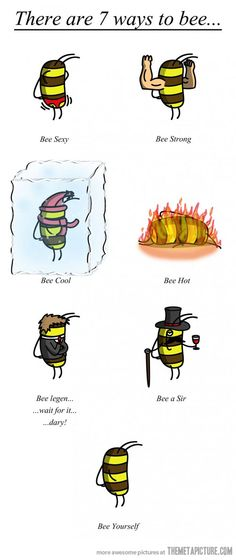 7 ways to bee Funny Images, Best Funny Pictures, Funny Pics, Himym, Bee Drawing, Ruche, Bee Happy, Bee Pics, Bee Keeping