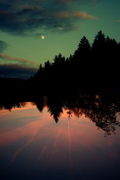 reflections,