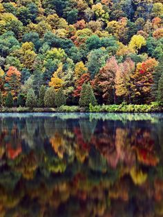 ~~Autumn, Allegheny State Park, Red house lake, western New York State by tryonphoto~~