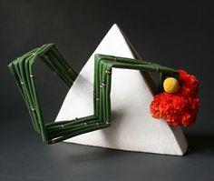 angular Equisetum =snake grass/triangle