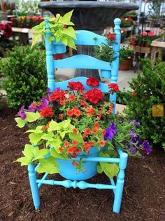 Vintage chairs made into plant stands.