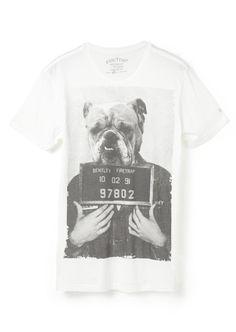 pug mugshotvshirt Cool Tees, Cool T Shirts, My Shopping List, Printed Tees, Pug, Graphic Tees, Shirt Designs, Menswear, Graphics