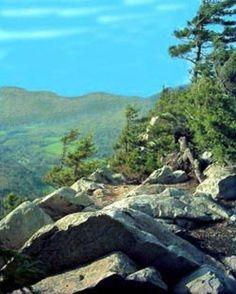 Green Mountain National Forest, Vermont | ... Cliffs in Green Mountain National Forest, Vermont. Courtesy USFS