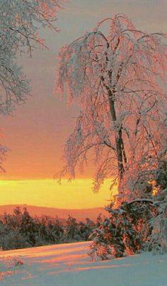 Winter Wonderland - Sunset winter in Maine.