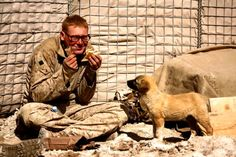 soldiers and puppies | Soldiers and Their Best Friends