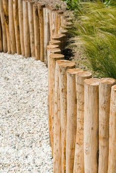 Beach Gardens, Outdoor Gardens, Landscape Architecture, Landscape Design, Dream Garden, Home And Garden, Terrace Garden Design, Garden Stairs, Fence Design