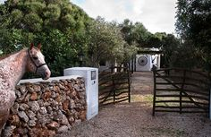 good location and available Es Castell chateau / country house rental - Horse of the house