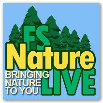 Pollinator Live-Distance Learning adventures