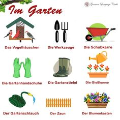 Im Garten - In the Garden! 🌳🍃🌸🌹 .. .. For more: Follow @germanlanguagecircle  Follow @germanlanguagecircle  Follow @germanlanguagecircle  Follow @germanlanguagecircle .. .. .. #german #germany #germanlanguage #germanlanguagecircle #garten #imgarten #gardenvocabulary #vokabeln #vokabelnlernen #lernen #lernendeutsch #deutschdrahthaar #maxmueller #maxmuellerbhavan #goethe #goetheinstitut #languagelearning #language #languagestudy #deutschland #ichsprechedeutsch #idiomas #foreignlanguage #langua German Language Learning, Learn German, Germany, Tips, Garden Boots, Wheelbarrow, Garden Hose, Deutsch